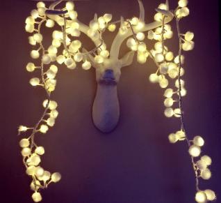 deer and lights www.coxandcox.co.uk